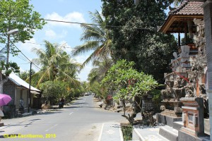 Lazy street of Pejeng