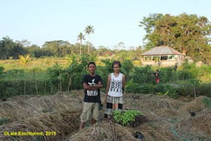 Local organic farmers at of Pejeng