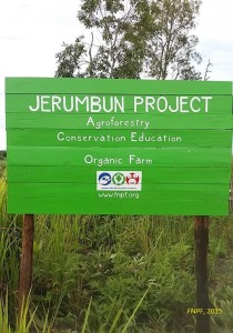 Our Project in Jerumbun