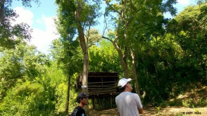 David and our staff Ketut are observing the forest near FNPF's Center.