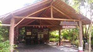 Our Office in Borneo